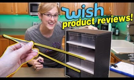 We Review Reptile Products from Wish!