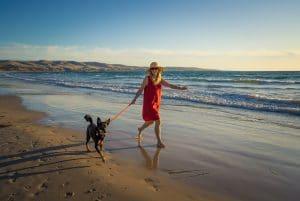 Beautiful mature woman and pet dog