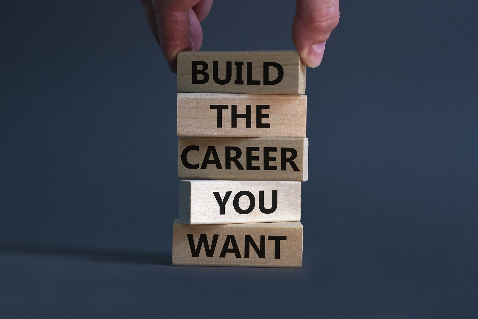 Business, build the career you want concept