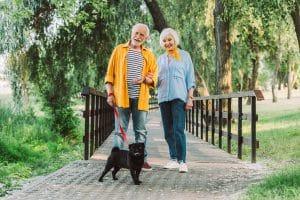 Smiling Elderly Couple with pug dog